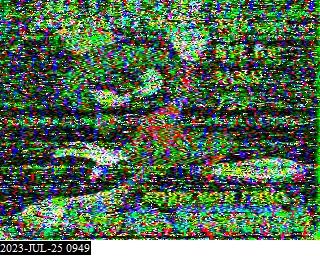 13CB55 image#1